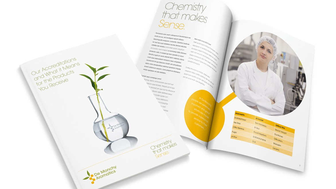 demonchy-brochure